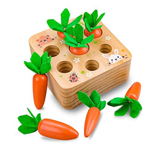 Evira 1 2 3 Jahre altes Babyspielzeug, Montessori Kinder sensorisches Spielzeug 12 18 24 Monate...