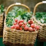 Trubarjeva zelena tržnica