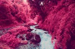 Infrared-Photography-of-Nepal-1