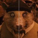 Foto: Experiencefilm