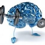 bigstock-Brain-24073097