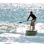cover-koza-surf