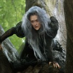 Into-the-Woods-Movie-Meryl-Streep-as-the-Witch 2