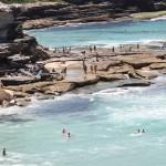 Drago brezdelje na avstralski plaži.