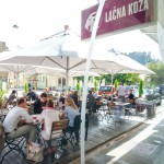 lacna koza-14_low