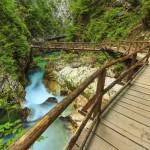 Wooden bridge and green river,Vintgar gorge,Slovenia,Europe