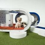 Samsungova pasja hišica prihodnosti Dream House.