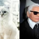 Choupette-Lagerfeld-riche-a-millions 3