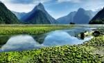 Milford Sound, South Island, Nova Zelandija