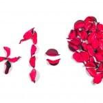 Matematika ljubezni