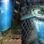 AquaDom je največji valjasti akvarij na svetu