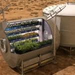 Prva pridelana hrana v vesolju