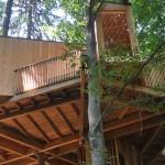 Drevesna hiša v celjskem Mestnem gozdu