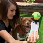 Selfie s psom