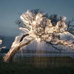 Serija fotografij ''Impermanent Sculptures''