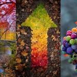 Jesen - v kraljestvu barv