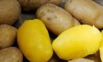 Ekspresno lupljenje krompirja