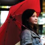 cypress umbrella graphic-04