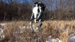 Humanoidni robot Atlas
