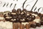 Festival čokolade 2016