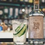 Gin Anti-aGin