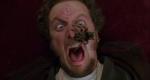 Lovilec pajkov