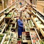 V arhivu: Muzej naravne zgodovine Smithsonian