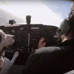 Pes pilot