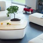 Funkcionalno pohištvo, ki je tudi korito/lonček za rastline
