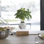 Lyfe - lebdeči okrasni lonci za rastline