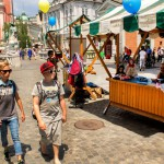 veseli dan prostovoljstva Foto Nejc Torkar