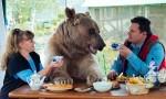 Stepan - medved, ki je hišni ljubljenček