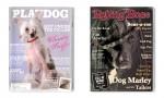 Tako bi bile videti naslovnice znanih revij, če bi svetu vladali psi.