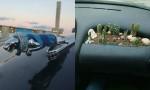 Domiselno okrašeni avtomobili