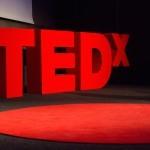 TEDxLjubljana 2016: Zavrtimo kolesje