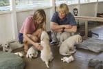 Življenje lastnikov psov