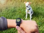 Pametna zapestnica CMRA za uro Apple Watch
