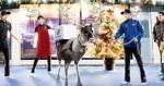 Za Domino bo decembra pico dostavljal severni jelen!