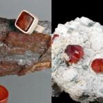 mineralfest ljubljana