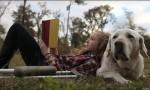 If I Could Talk – kratek film o psu, ki vas bo ganil do solz