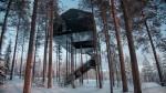 Treehotel: Hotel na drevesu na Švedskem