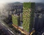 Navpični gozd na Kitajskem