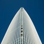 Nebotičnik Lotte World Tower