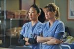2005: Talenti v belem (Grey's Anatomy)