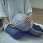 Qoobo: terapevtski hišni ljubljenček