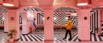 pink-zebra-feast-india-company-kanpur-india-renesa-designboom-1800