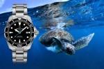 Z nakupom ure boste prispevali k reševanju želv.