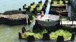 Plavajoči park Rotterdam