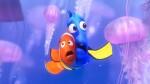Kaj narediti, ko vas opeče meduza in kako se čim prej rešiti bolečine?