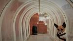 Bude Tunnel: bizarna atrakcija, ki je na TripAdvisoru v trenutku postala hit